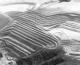Samarco Tailings Dam Failure (Public Release)